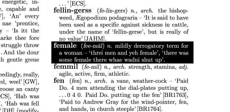 Female n. mildly derogatory term for a woman.