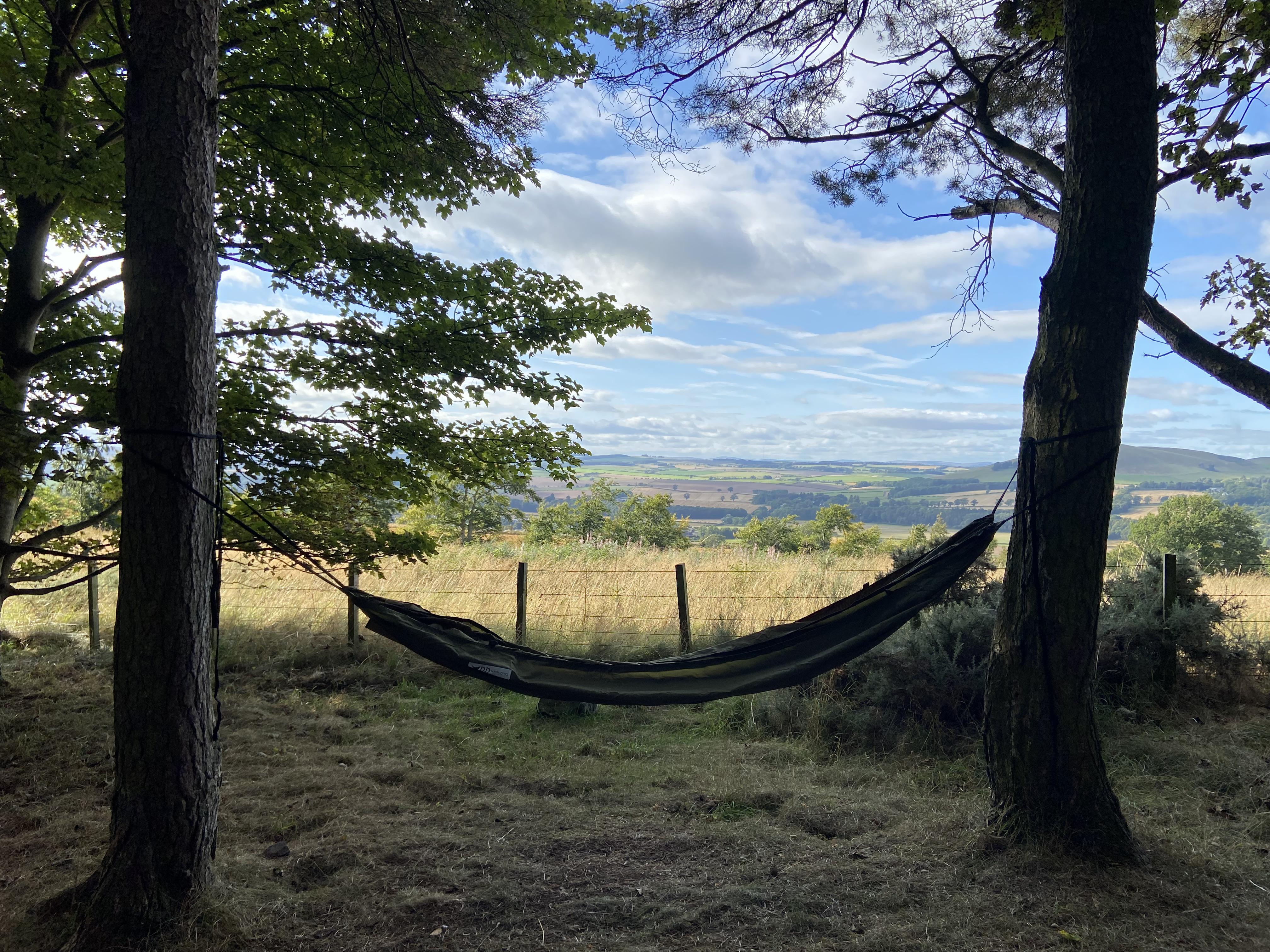 Photo of a hammock slung between two trees on Ruberslaw